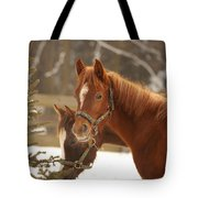 Two Horses In Winter Day Tote Bag