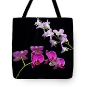 Two Kind Of Orchid Flower Tote Bag