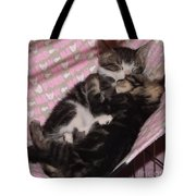 Two Kittens Sleeping Tote Bag