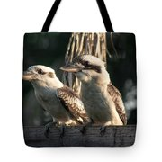 two Kookaburra Tote Bag
