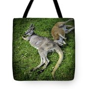 Two Lazy Kangaroos Lying Down Tote Bag