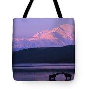 Two Moose Kiss In Wonder Lake Tote Bag