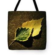 Two Of Birch Leaves Tote Bag