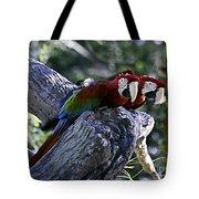 Two On A Branch Tote Bag