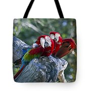 Two On A Branch Two Tote Bag