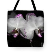 Two Orchids  Tote Bag