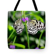 Two Paper Kite Or Rice Paper Or Large Tree Nymph Butterfly Also Known As Idea Leuconoe Tote Bag