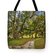 Two Paths Diverged In A Live Oak Wood...  Tote Bag