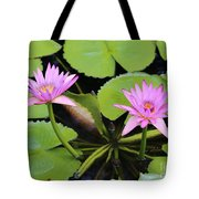 Two Pink Water Lilies Tote Bag