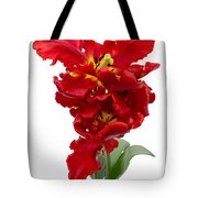 Two Red Parrot Tulips Tote Bag