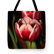 Two Red Tulips Tote Bag