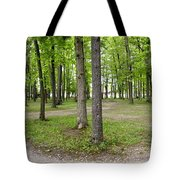 Two Roads Diverged Letchworth State Park Panorama Tote Bag
