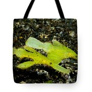 Two Robust Ghost Pipefish In Volcanic Tote Bag by Steve Jones