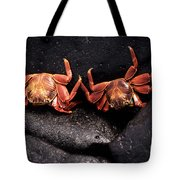 Two Sally Lightfoot Crabs Tote Bag