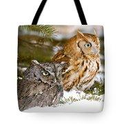 Two Screech Owls Tote Bag