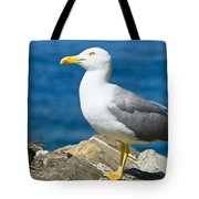 Two Seagull Tote Bag