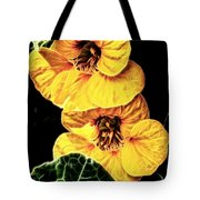 Two Shy Sisters Fractal Tote Bag