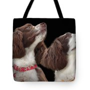 Two Spaniels Tote Bag