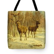 Two Stags In A Clearing In Winter Tote Bag