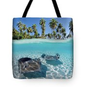 Two Stingrays 1 Tote Bag