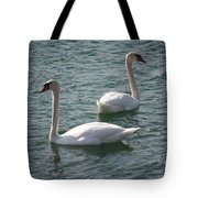 Two Swans A Swimming Tote Bag