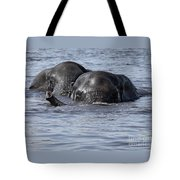 Two Swimming Elephants Tote Bag