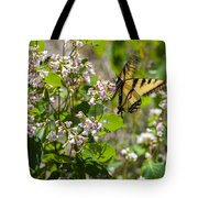 Two Tailed Swallowtail Tote Bag