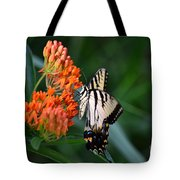 Two-tailed Swallowtail Tote Bag