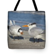 Two Terns Talking Tote Bag