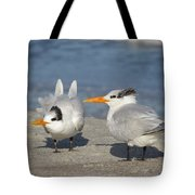 Two Terns Watching Tote Bag