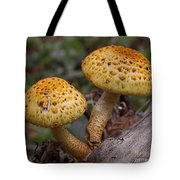 Two Toadstool Chums On A Log Tote Bag