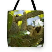 Two-toed Sloth Relaxing With A Grin Tote Bag