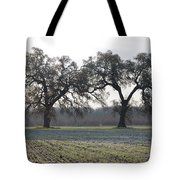Two Tree Frosty Morning Tote Bag