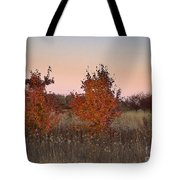 Two Trees At Sunset Tote Bag