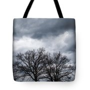 Two Trees Beneath A Dark Cloudy Sky Tote Bag