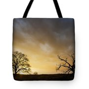 Two Trees Greeting The Sun Tote Bag