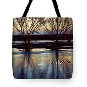 Two Trees In The Bosque Tote Bag