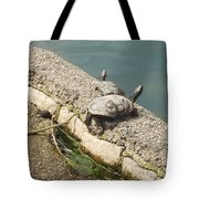 Two Turtles Tote Bag