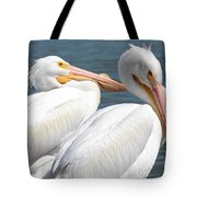 Two White Pelicans Tote Bag