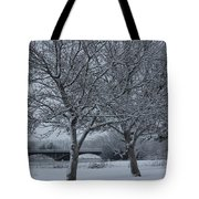 Two Winter Trees Tote Bag
