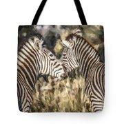 Two Zebras Equus Quagga Nuzzlling Tote Bag