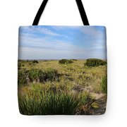 Tybee Island Dunes And Path Tote Bag