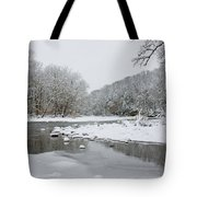 Tyler Park In Winter Tote Bag