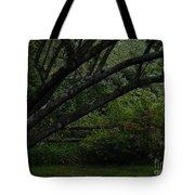 Tyler Tree 1 Tote Bag