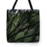 Tyler Tree 2 Tote Bag
