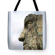Tyndareus Cracked 1 Tote Bag