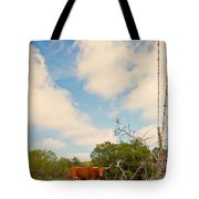 Typically Texas Tote Bag