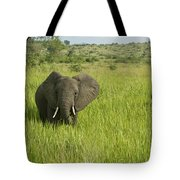 Ugandan Elephants Tote Bag