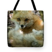 Uh Oh Thought The Fox Tote Bag