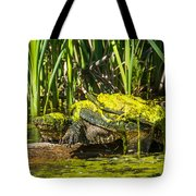 Under Covered Tote Bag